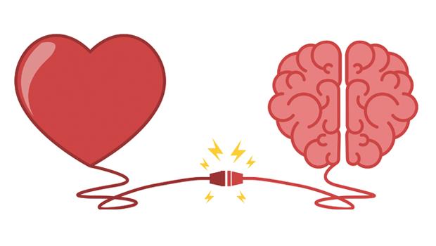coração e cérebro conectados